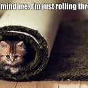 Rollin' through
