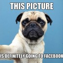 This Picture Is Definitely Going To Facebook