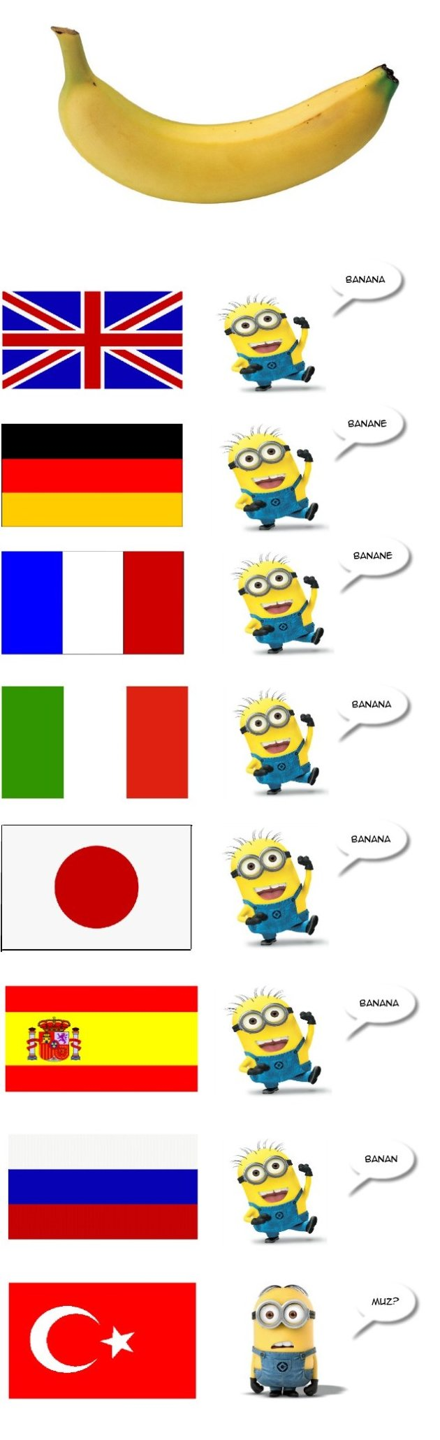 Banana in different languages