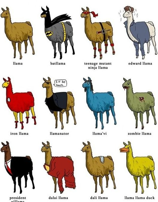 Different types of llamas
