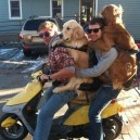 Dogs Go for Scooter Ride