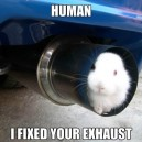 Engineer Rabbit