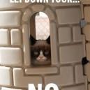 Grumpy Cat is Rapunzel