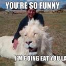 Happy Lion