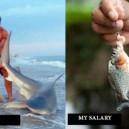 Job vs. Salary