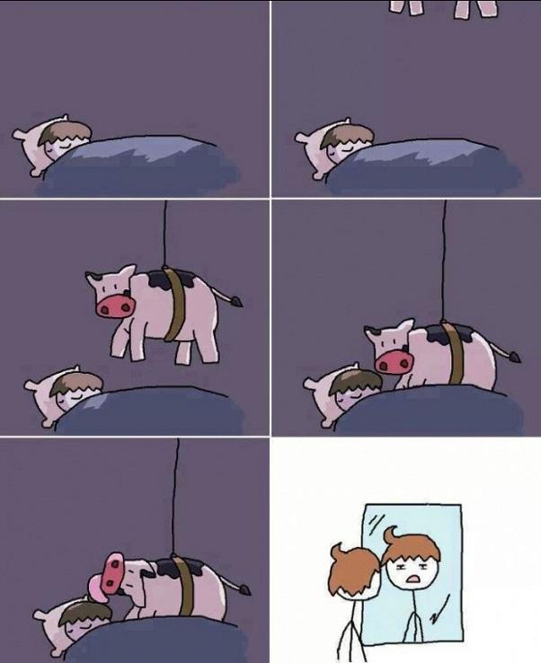 Ninja Cows