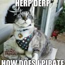 Pirate Kitteh