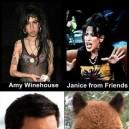 Celebrities look alikes