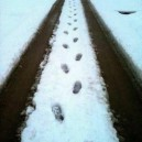 Fred Flintstone Was Here