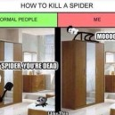 How to Kill A Spider