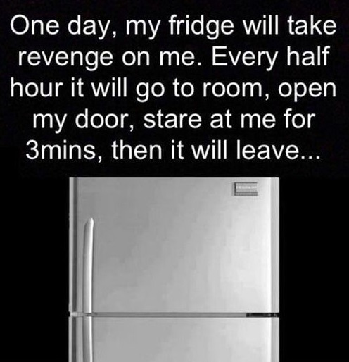 The revenge of the fridge