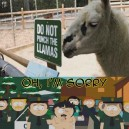 Do not punch the Llamas