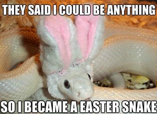Easter Snake