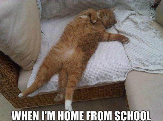 Home From School