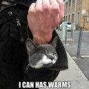 I can has warms