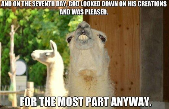 On the seventh day…