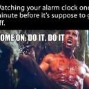 The alarm clock