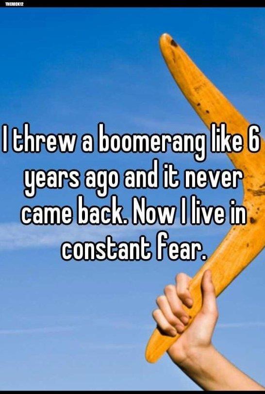Threw a boomerang