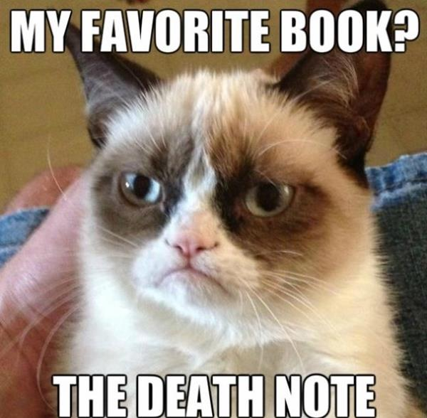 Grumpy Cats Favorite Book