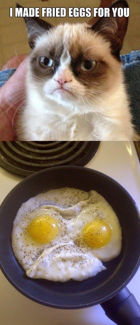 Grumpy Eggs