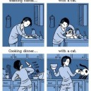 Life Without a Cat