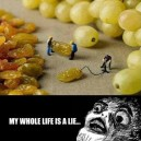 My Whole Life Is A Lie