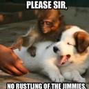 Please sir…