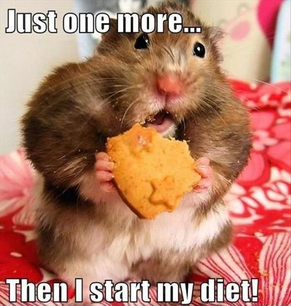 Time to start my diet!