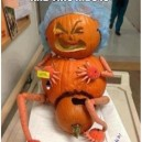 Where Do Pumpkins Come From