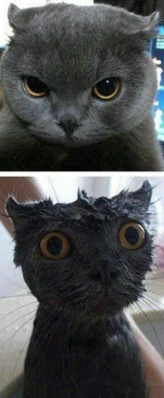 Before And After Shower