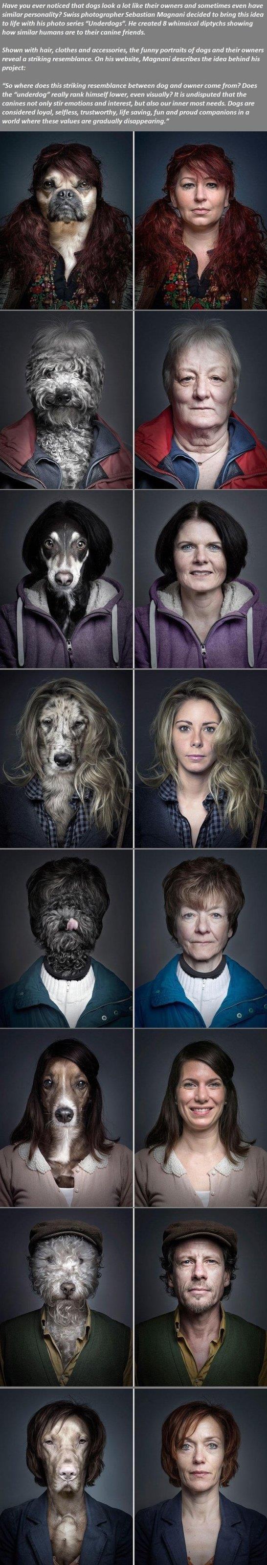Dogs Looking Exactly Like Their Owners