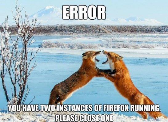 Firefox Error