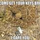 Get you keys