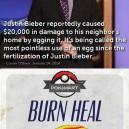 Justin Bieber Burn