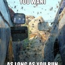 Would you do it