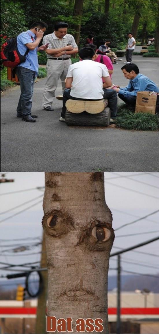 Dat tree