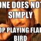 Flappy Birds MEME