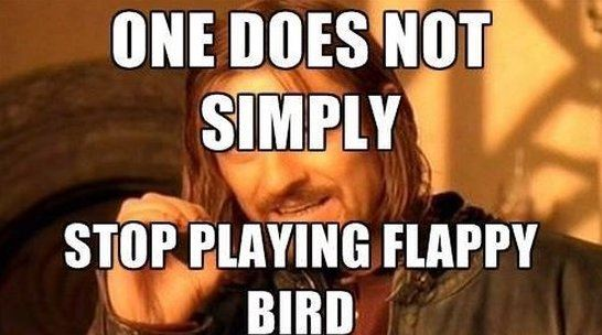 Flappy Birds MEME