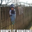 How's it hanging