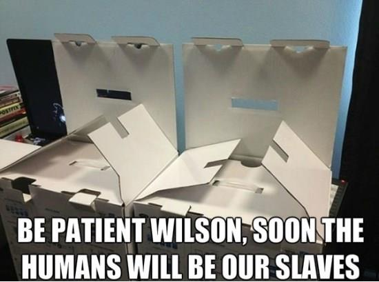 Humans will be our slaves