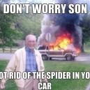 I killed the spider