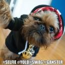 Selfie Yolo Swag Gangster