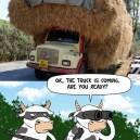 The Hay Heist