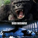 Even King Kong