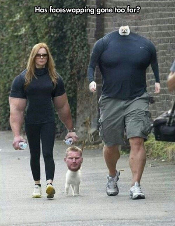 Face swapping gone too far