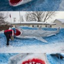 Giant snow shark