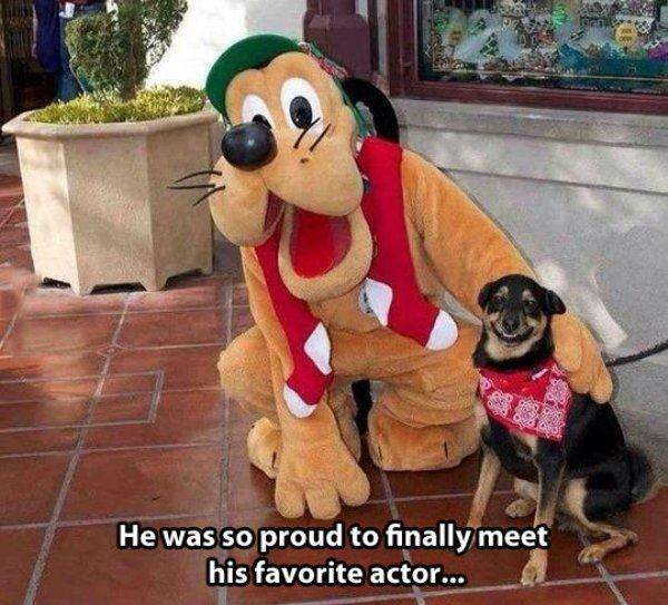 He was so proud
