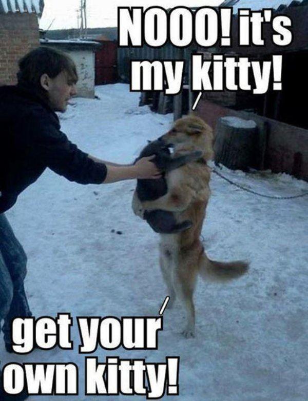 Noooo it's mine!