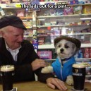 Out for a pint