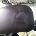 Why you wear a seatbelt